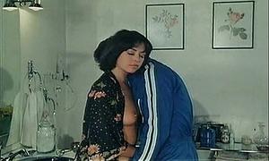 El fontanero, su mujer, y otras cosas de meter - 1981 ( full clip )